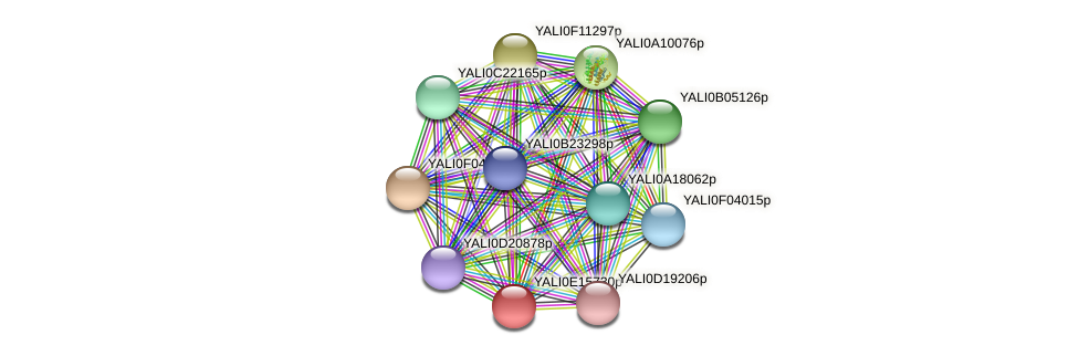 XP_503994.1 protein (Yarrowia lipolytica) - STRING interaction network