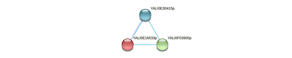 XP_504026.1 protein (Yarrowia lipolytica) - STRING interaction network