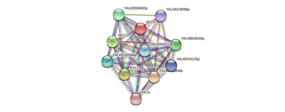 SEC9 protein (Yarrowia lipolytica) - STRING interaction network