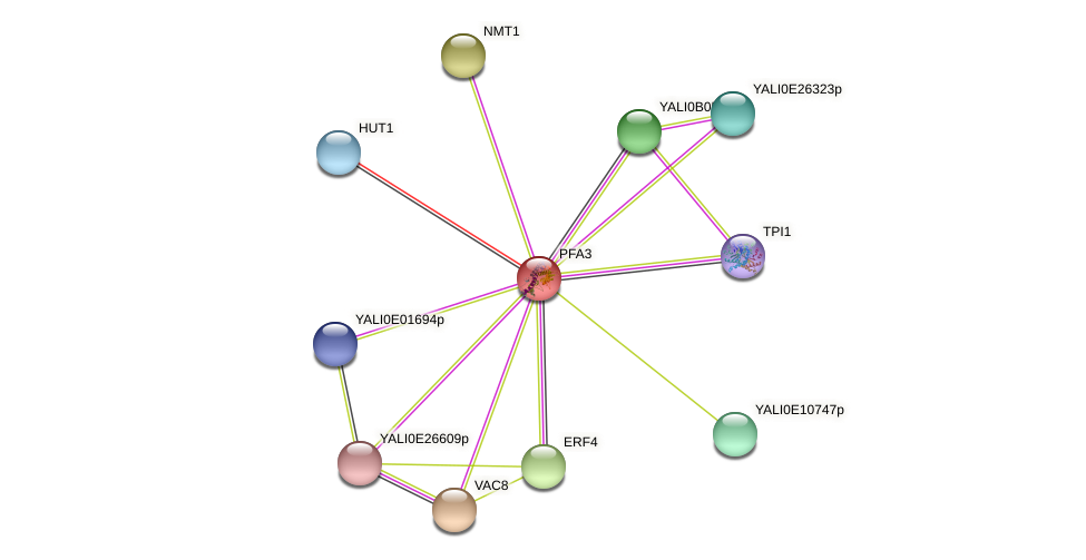 PFA3 protein (Yarrowia lipolytica) - STRING interaction network