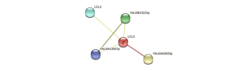 LCL3 protein (Yarrowia lipolytica) - STRING interaction network