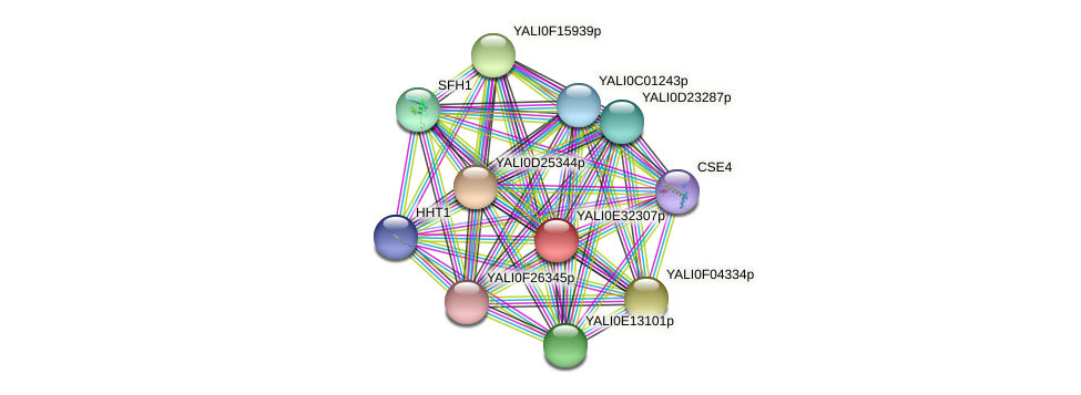 XP_504679.1 protein (Yarrowia lipolytica) - STRING interaction network