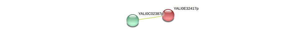 XP_504684.1 protein (Yarrowia lipolytica) - STRING interaction network