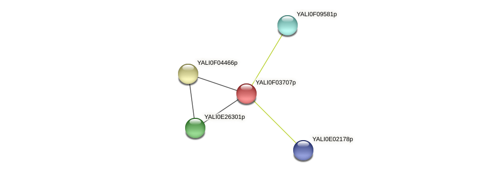 XP_504960.1 protein (Yarrowia lipolytica) - STRING interaction network