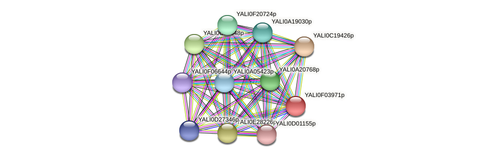 XP_504972.1 protein (Yarrowia lipolytica) - STRING interaction network