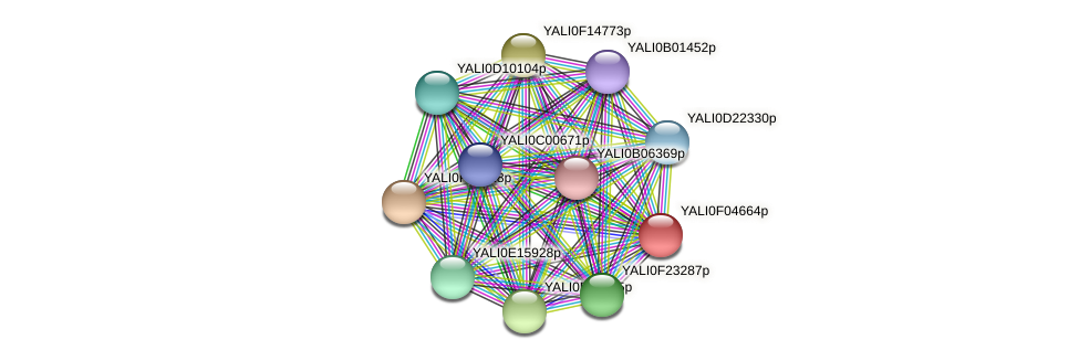 XP_505001.1 protein (Yarrowia lipolytica) - STRING interaction network