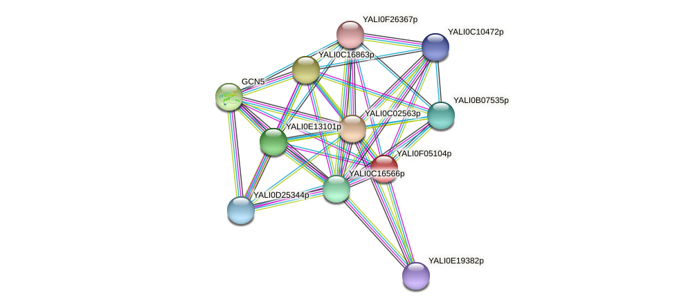 XP_505018.1 protein (Yarrowia lipolytica) - STRING interaction network