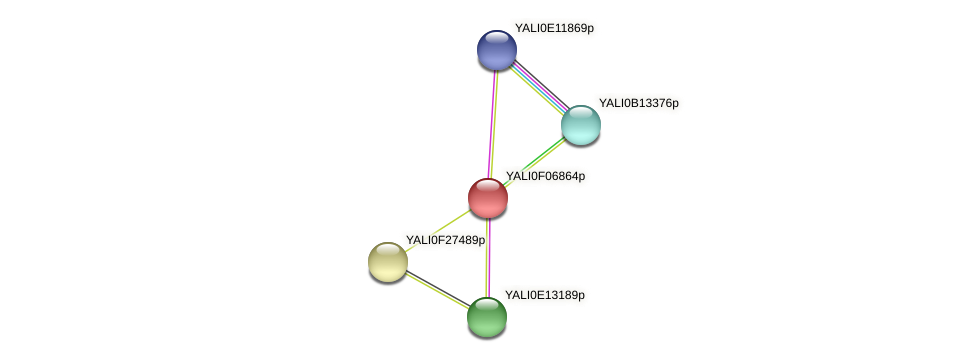 XP_505099.1 protein (Yarrowia lipolytica) - STRING interaction network
