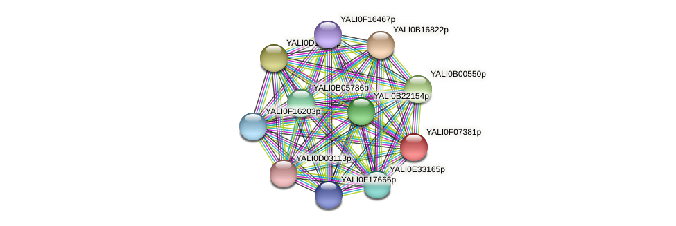 XP_505118.1 protein (Yarrowia lipolytica) - STRING interaction network