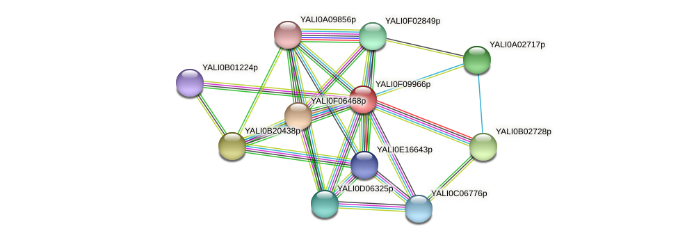 XP_505228.1 protein (Yarrowia lipolytica) - STRING interaction network