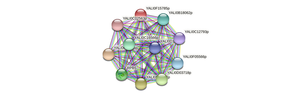 XP_505469.1 protein (Yarrowia lipolytica) - STRING interaction network