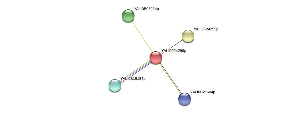 XP_505823.1 protein (Yarrowia lipolytica) - STRING interaction network