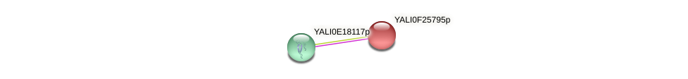 XP_505883.1 protein (Yarrowia lipolytica) - STRING interaction network