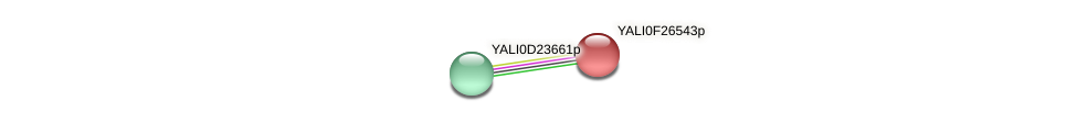 XP_505912.1 protein (Yarrowia lipolytica) - STRING interaction network