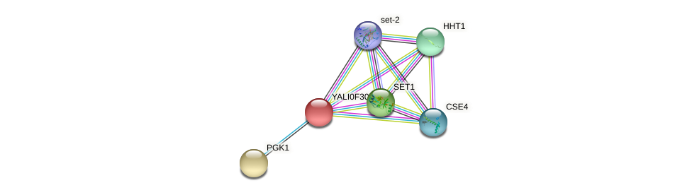 XP_506045.1 protein (Yarrowia lipolytica) - STRING interaction network