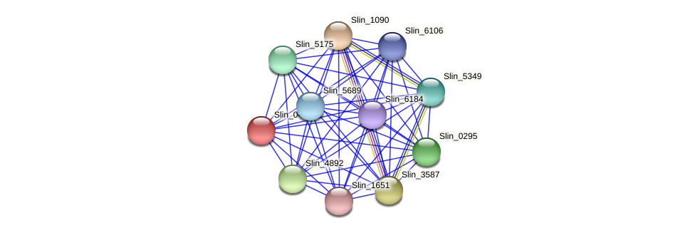 Slin_0445 protein (Spirosoma linguale) - STRING interaction network