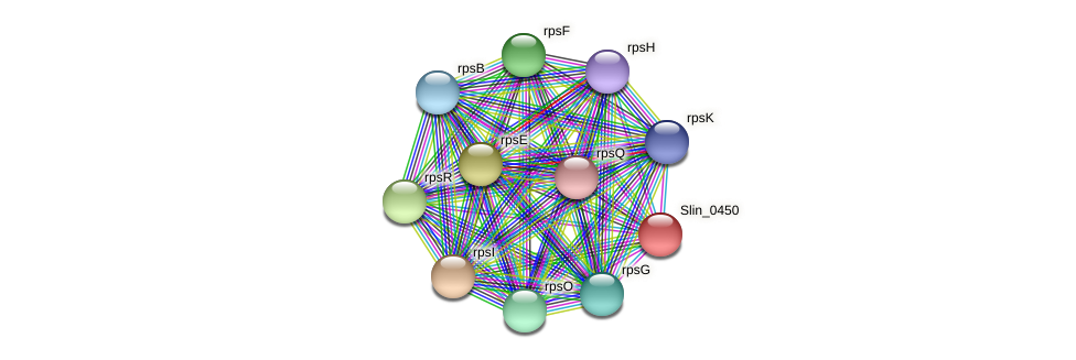 Slin_0450 protein (Spirosoma linguale) - STRING interaction network