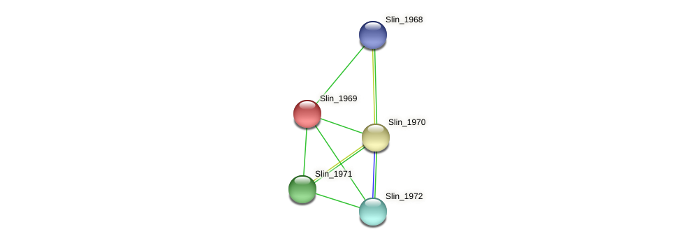 Slin_1969 protein (Spirosoma linguale) - STRING interaction network