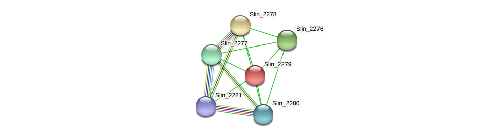 Slin_2279 protein (Spirosoma linguale) - STRING interaction network