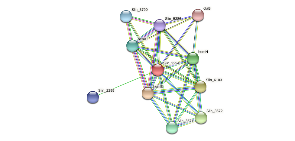 Slin_2294 protein (Spirosoma linguale) - STRING interaction network