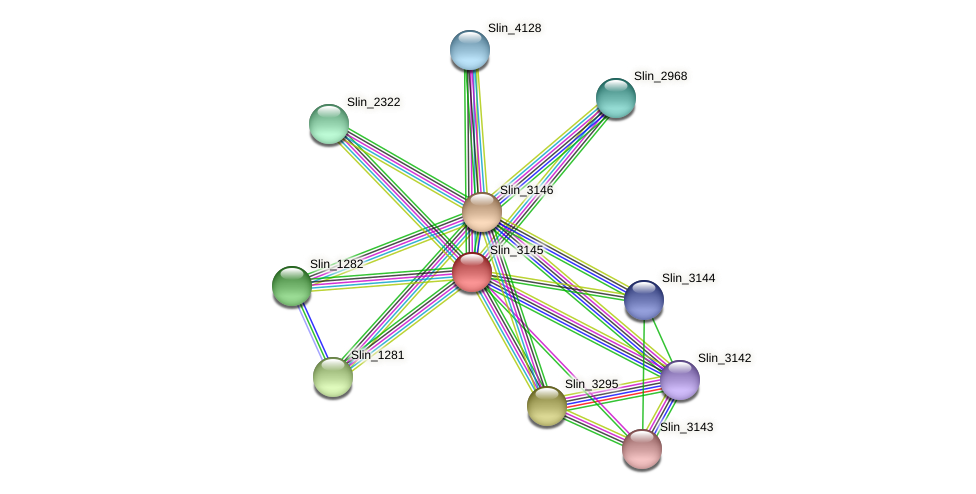 Slin_3145 protein (Spirosoma linguale) - STRING interaction network