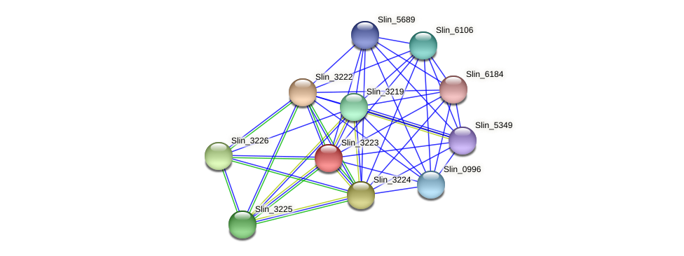 Slin_3223 protein (Spirosoma linguale) - STRING interaction network