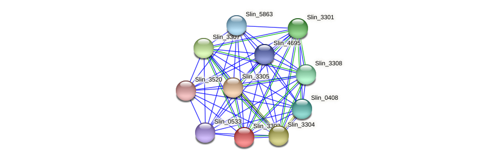Slin_3302 protein (Spirosoma linguale) - STRING interaction network