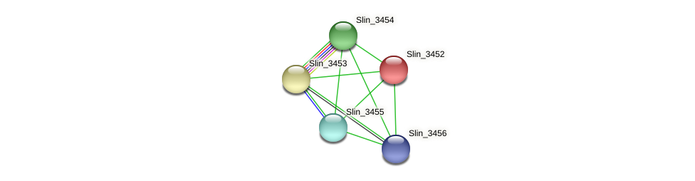 Slin_3452 protein (Spirosoma linguale) - STRING interaction network