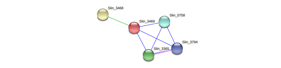 Slin_3469 protein (Spirosoma linguale) - STRING interaction network