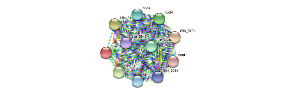 Slin_3483 protein (Spirosoma linguale) - STRING interaction network