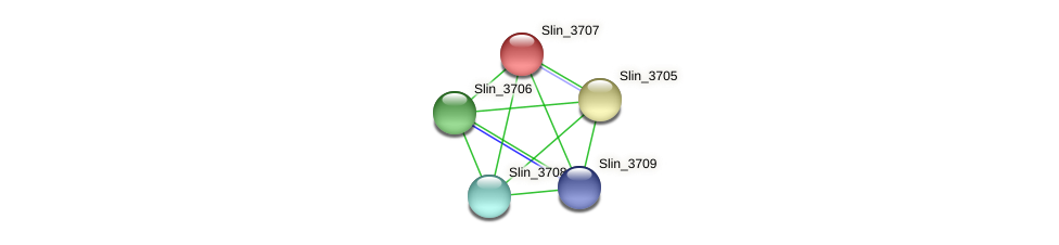 Slin_3707 protein (Spirosoma linguale) - STRING interaction network