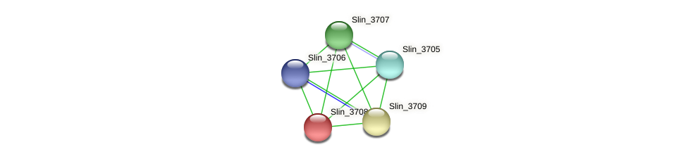 Slin_3708 protein (Spirosoma linguale) - STRING interaction network