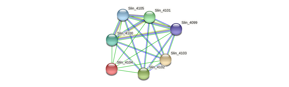 Slin_4104 protein (Spirosoma linguale) - STRING interaction network