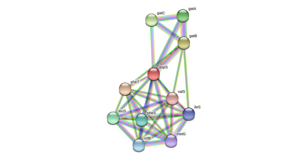Slin_4178 protein (Spirosoma linguale) - STRING interaction network
