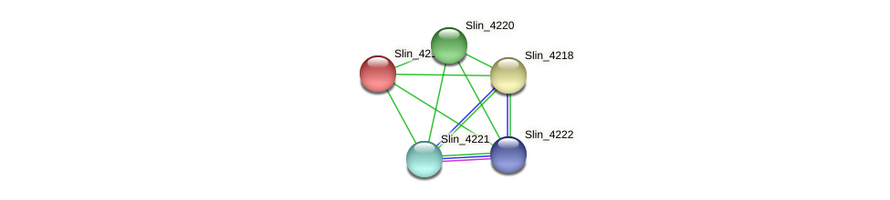 Slin_4219 protein (Spirosoma linguale) - STRING interaction network