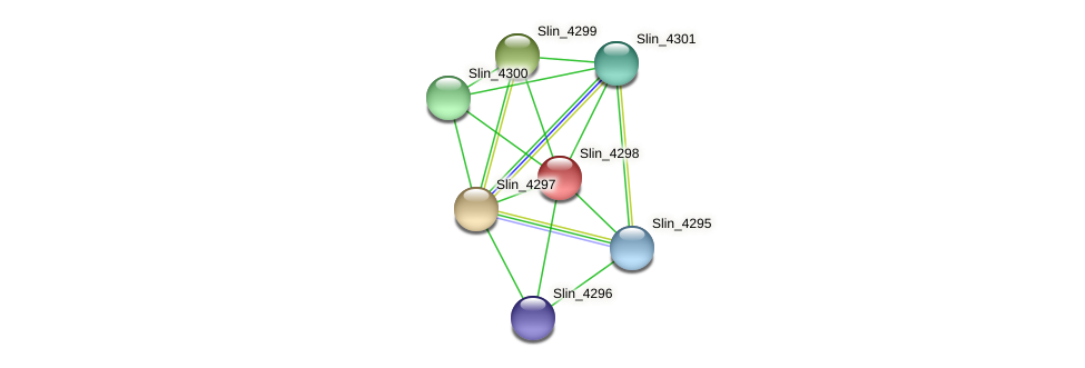 Slin_4298 protein (Spirosoma linguale) - STRING interaction network