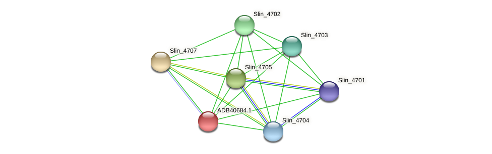 Slin_4706 protein (Spirosoma linguale) - STRING interaction network