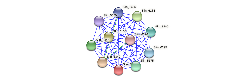 Slin_4892 protein (Spirosoma linguale) - STRING interaction network