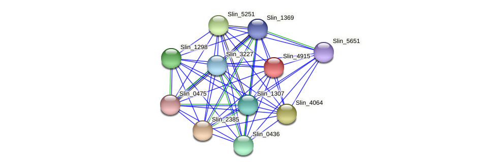 Slin_4915 protein (Spirosoma linguale) - STRING interaction network