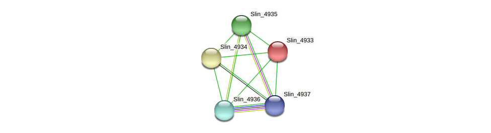 Slin_4933 protein (Spirosoma linguale) - STRING interaction network