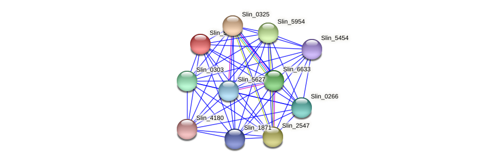 Slin_5079 protein (Spirosoma linguale) - STRING interaction network