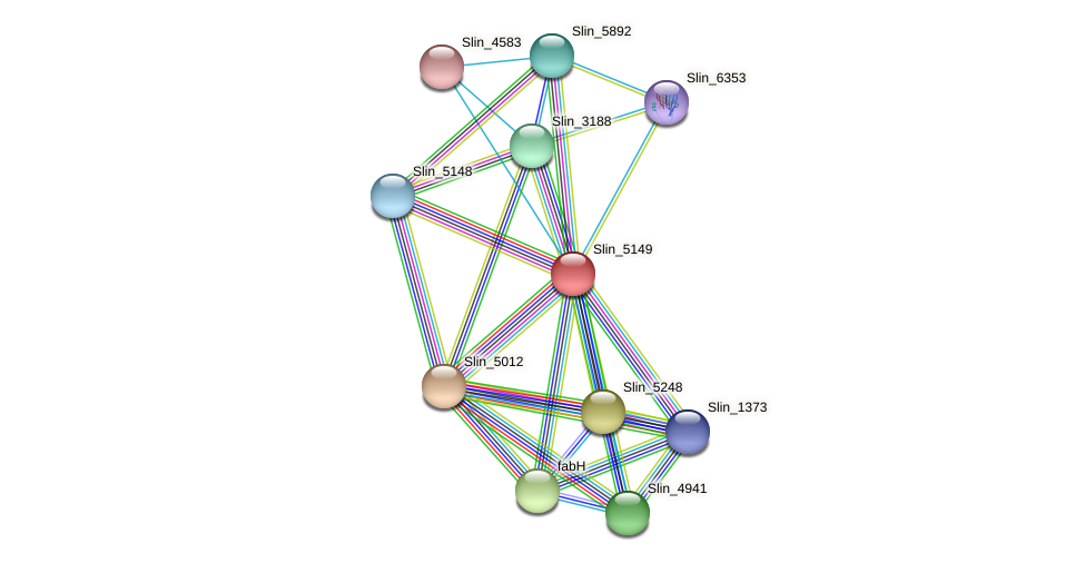 Slin_5149 protein (Spirosoma linguale) - STRING interaction network