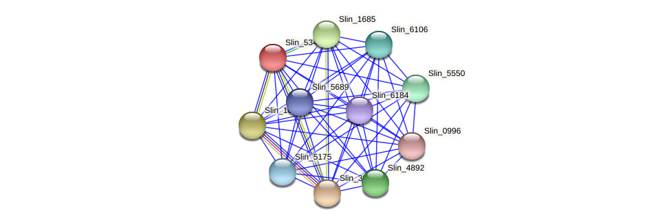 Slin_5349 protein (Spirosoma linguale) - STRING interaction network