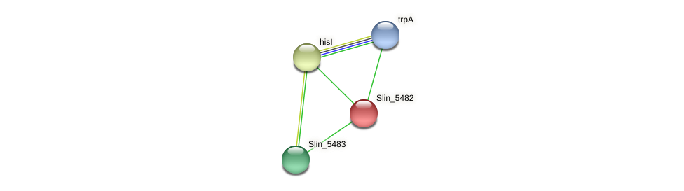 Slin_5482 protein (Spirosoma linguale) - STRING interaction network
