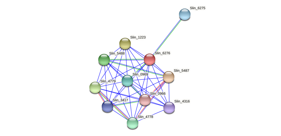 Slin_6276 protein (Spirosoma linguale) - STRING interaction network