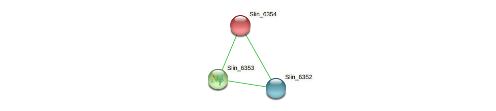 Slin_6354 protein (Spirosoma linguale) - STRING interaction network