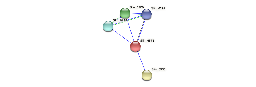 Slin_6571 protein (Spirosoma linguale) - STRING interaction network