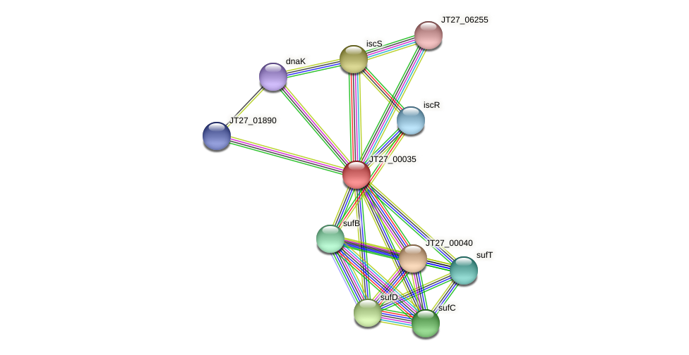 AFA_08795 protein (Alcaligenes faecalis) - STRING interaction network