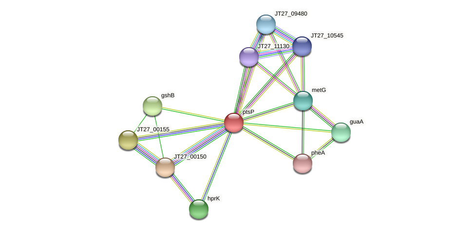 JT27_00145 protein (Alcaligenes faecalis) - STRING interaction network
