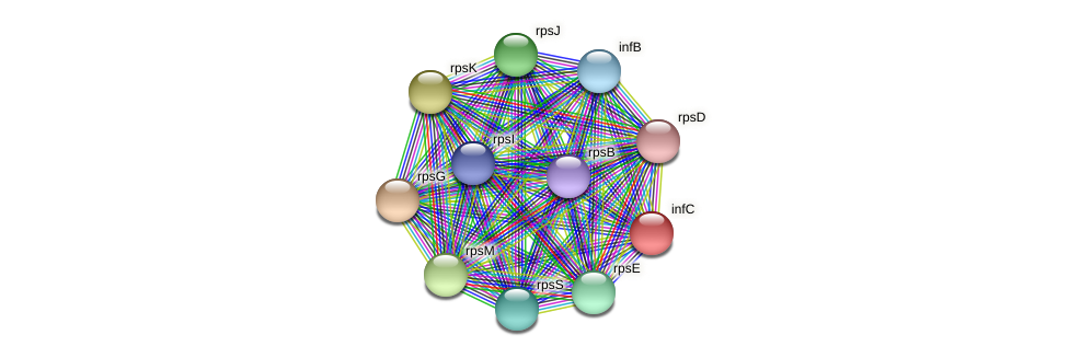 infC protein (Alcaligenes faecalis) - STRING interaction network